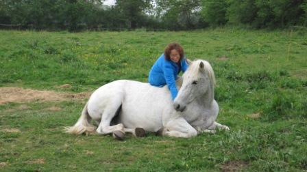 vertrouwen van paard winnen